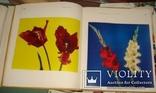 Цветы. Киев 1973 г 224 стр, фото №9