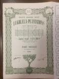 Компанія луколела плантація, Колоніальна Бельгія, пай, 1944, фото №2
