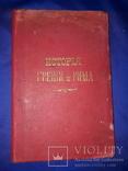 1903 История Греции и Рима, фото №2