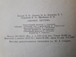 Значки Якутии 1972г., фото №7
