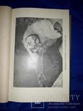1913 Революционный период русской истории, фото №8