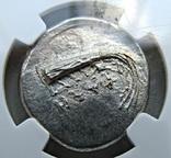 Статер г. Фаселис (Ликия) IV в. до н. е., фото №3