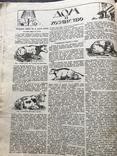1928 Женский журнал, фото №7