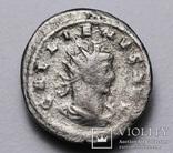 Галлієн, срібний антонініан, 264-265 р. - Капітолійська вовчиця, фото №3
