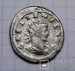Галлієн, срібний антонініан, 264-265 р. - Капітолійська вовчиця, фото №8