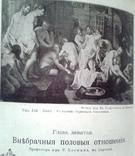"""Мужчина и Женщина""- Том II. С.- Петербург 1911г., фото №13"
