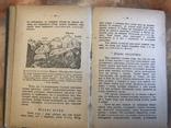 Нарис геології, Львів, 1905р., фото №8