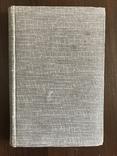 1914 Египет Край Озириса, фото №3