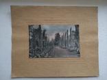 Набор из 4шт. фото с паспарту Сочи, фото №6