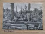 Набор из 4шт. фото с паспарту Сочи, фото №7