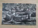 Набор из 4шт. фото с паспарту Сочи, фото №13