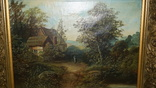 Сельский пейзаж., фото №3