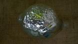 Лимон большой ссср., фото №10