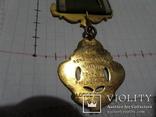 Масонская медаль знак масон 2147, фото №7