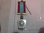 Масонская медаль знак масон 1884, фото №6