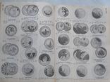Каталог-справочник всех монет мира за период с 1901 по 2001 гг. (Более 47 000 иллюстраций), фото №10