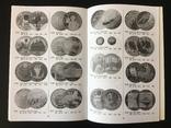 Книга монеты Украины. 1995-2005. Первое издание, фото №4