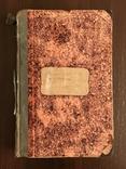1882 Стихотворения Святогорца, фото №3