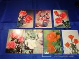 Открытки Розы Вьетнам Болгария Братислава Лейпциг 7 шт, фото №2