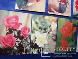 Открытки Розы Вьетнам Болгария Братислава Лейпциг 7 шт, фото №10