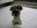 Собака 1, фото №2