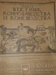 1921 Вестник коневодства, фото №2