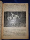 1910-11 Русский паломник 25 номеров, фото №4