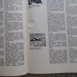Наука и человечество (международный ежегодник) 1970р., фото №12