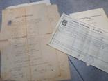 Дипломы + аттестаты + свидетельства 1880-1940гг, фото №2
