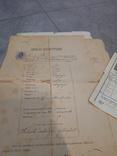 Дипломы + аттестаты + свидетельства 1880-1940гг, фото №3