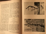 1939 Архитектура Русского Класицизма, фото №6