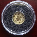 5 евро 2010 Франция 1100 лет Аббатству Клюни   золото 999  тираж 3861, фото №6