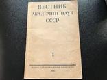 1946 Вестник Академии наук СССР, фото №2