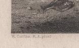 Старинная гравюра. 1836 годa. Дети рыбака.(18,5х12,5см.)., фото №9