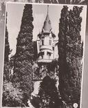 Сочи фото открытка (фоторепродукция), фото №5