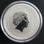 100 $ 2011 год Австралия «Утконос» платина 31,1 грамм 999,5', фото №3
