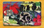 Телефонная карточка Мадагаскар 2000 г Лемур чип, фото №2