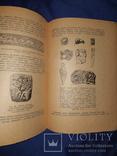 1947 Скiфи. Інститут археології, фото №11
