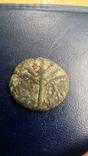 Иудея, 2-е восстание, Бар Кохба, Средн. бронза - 4, фото №4