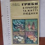 """Дудка """"Гриби в природі та житті людини"""" 1980р., фото №2"""