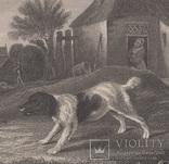 Старинная гравюра. Девид Тернер. Внимание. ХIХ- век. (31 х 23 см.) фото 3