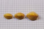 3 бусины Пейзажный янтарь 6,79 гр., фото №2