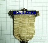 Масонский знак STEWARD. Серебро. RMIG 1921 г., фото №5