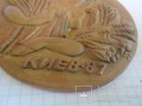 Медальон Конкурс аранжировщиков Киев 1987 год., фото №6