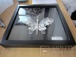 Бабочка филигрань серебряная нить ручная работа, фото №5