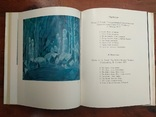 Книга суперобложка М.Казимирова. Николай Николаевич Золотарев. 1978 г., фото №7