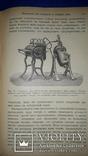 1908 Производство вин и приготовление консервов, фото №5