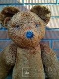 Медведь 1м10см х 60 см., фото №5