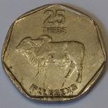 Ботсвана 25 тхебе, 1999