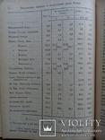 Государственный бюджет и государственные долги России 1908г., фото №6